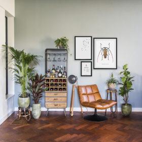 Woonkamer met posters van insecten en vogels