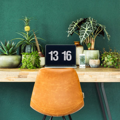 planten-op-kantoor