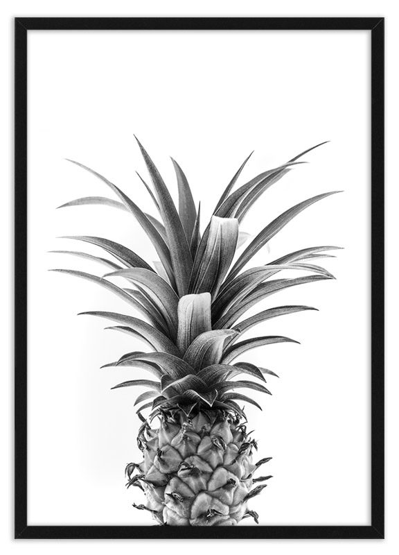 Poster ananas kroon