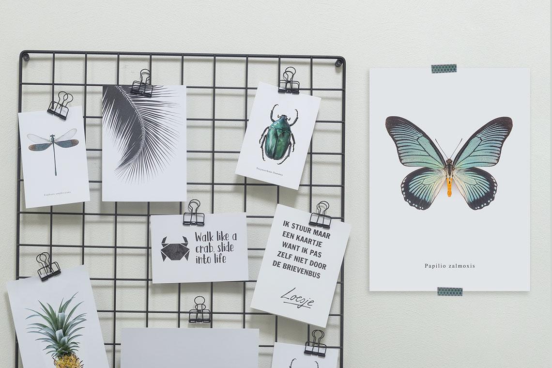 Fotos Ophangen Zonder Lijst.Creatief Je Prints Op Hangen Zonder Lijst Everydeco