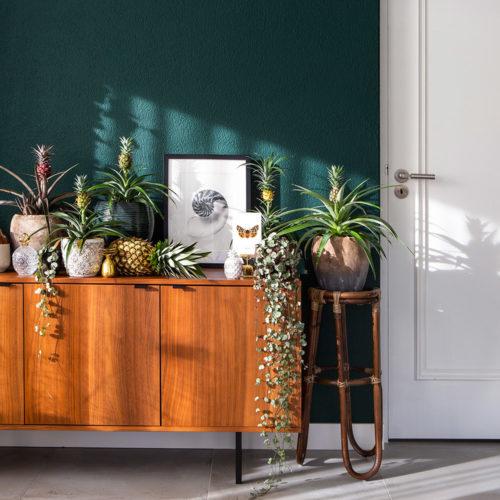 inspiratie ananasplant woonkamer bij donkere groene muur