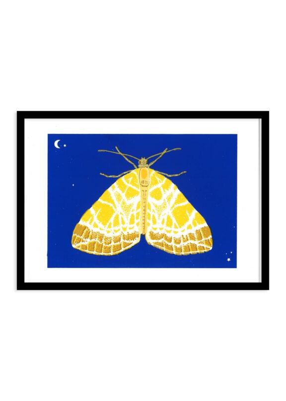 Doolhofspanner nachtvlinder zeefdruk