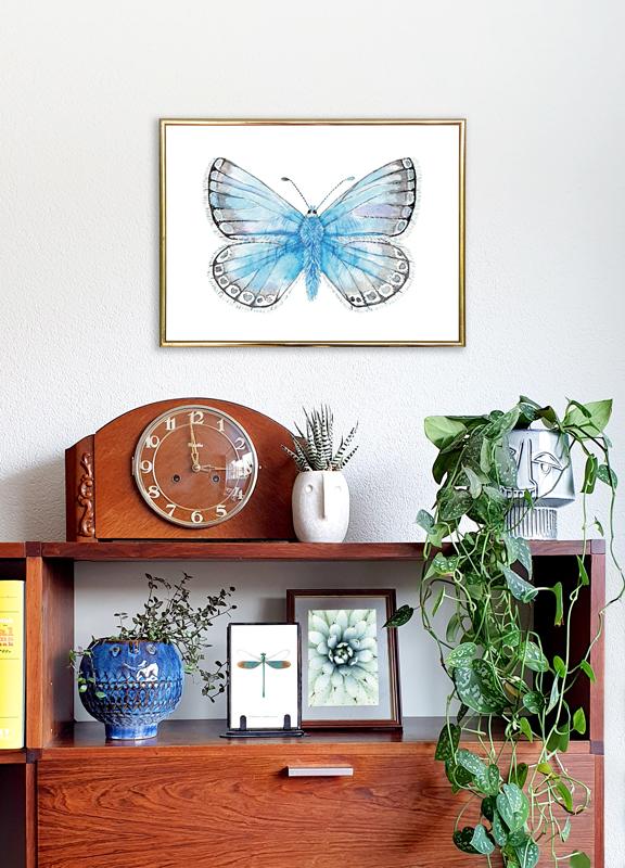 Bleek blauwtje vlinder